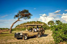 Review of Camp Linyanti & Camp Savuti
