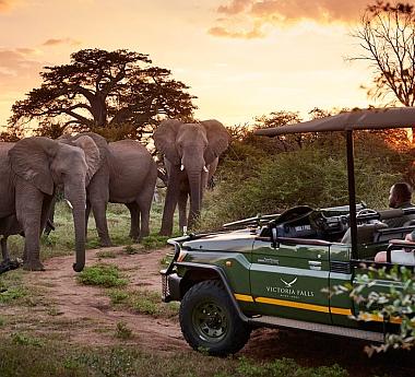 Botswana & Falls in Style